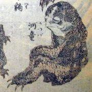 トリペディア   カッパ・天狗 南蛮人説を考察する